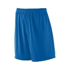 Mens Royal Blue Mesh Fitness Shorts
